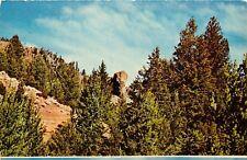 Elephant Head Rock Wapiti Valley Wyoming WY Postcard
