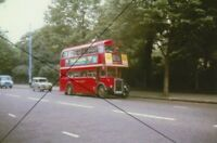 BUS PHOTO, LONDON TRANSPORT PHOTOGRAPH PICTURE, LEYLAND RTL ON ROUTE 88