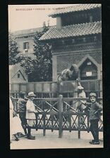Spain Barcelona zoo parque Animals ELEPHANT c1900/10s? PPC