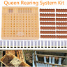 Cell Cups Cupkit Complete Bee Queen Rearing System Beekeeping Box Case Set Kit H
