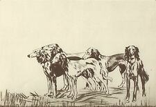 "Diana Thorne'S ""Salukis"" Vintage 1935 Gazelle Hound Dog Art Bookplate Print"