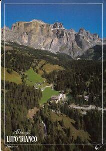 Dolomiti,Canazei (TN) Albergo Lupo Blanco ngl E3263