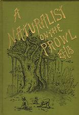 Un Naturalista On The Prowl .eha 1894