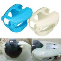1 Pcs Racing Pigeon Holder For Injection Feeding Vaccination Bird Supplie Y7Z6