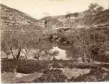 Palestine, Jérusalem, fontaine de Siloé  Vintage albumen print Tirage albuminé