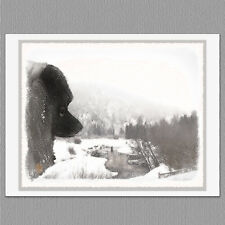 6 Keeshond Shadows Creek Dog Blank Art Note Greeting Cards