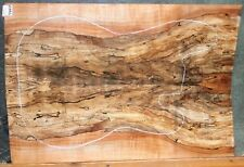 Spalted Curly Maple Wood 7993 Luthier Solid body Guitar Top Set 241/2x16+ x 5/16