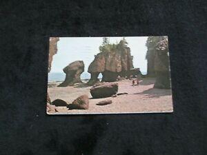The Rocks  Hopewell Cape      (New Brunswick)  Canada   1971 Postcard