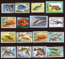 LES POISSONS  de mer de  tout pays, sea fish   28m 419