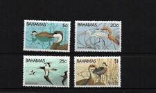BAHAMAS SG589/92, 1981 WILDLIFE (1ST) / BIRDS MNH SET