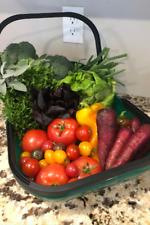 Colander Trug Harvest Basket
