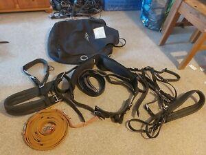 Shetland Tedex Driving Harness