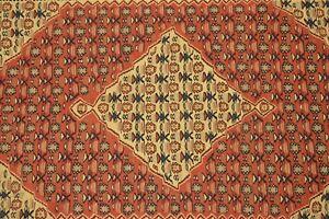Sunning Bijar Senneh Rug,Super Fine Quality Oriental Rug