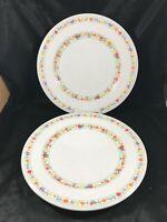 """Pair of Vintage NORITAKE HAPPY TALK 10-1/2"""" Dinner Plates"""