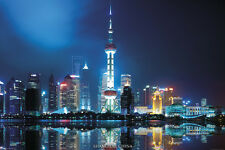 Shanghai China single 24x36 poster Largest City Building Skyline Lights Metro!!!