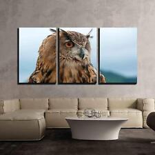"Wall26 - Eurasian Eagle Owl - Canvas Art Wall Decor - 24""x36""x3 Panels"