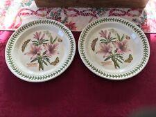 Portmeirion Botanic Garden Dinner Plates (Set of Two)