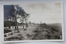 29446 AK Ostsee-Bad Wald-Dievenow Bäume und Gebäude am Strand 1943