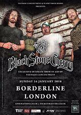 "BLACK STONE CHERRY ""TEENAGE CANCER TRUST"" 2016 LONDON CONCERT TOUR POSTER - Rock"