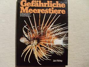 Buch Gefährliche Meerestiere NEU