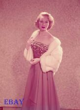 Virginia Mayo Vintage 5  X  7  Transparency