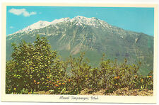 Mt. Timpanogos, Near Provo, Utah Unused Vintage Postcard