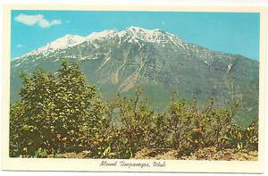 Mt. Timpanogos, Near Provo, Utah Unused Vintage Postcard
