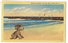 Puppy Dog WAITING PATIENTLY For You OCEAN CITY NEW JERSEY NJ Linen POSTCARD 1943