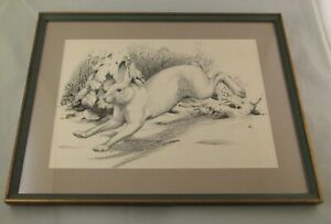 Earl Poole Orig. Pen/Ink Drawing PA Game News Illustration Snowshoe Hare Rabbit