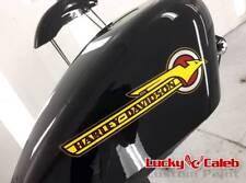 Harley Davidson Sportster EFI Tank (Exchange) Tin Custom Paint