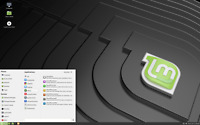 Linux Mint 19.2 Mate Edition Tina 64-bit Linux Live Install 16 GB USB 2.0 PC Mac