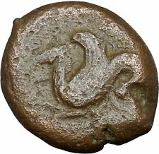 Syracuse in Sicily 344BC Timoleon Ancient Greek Coin Hippocamp Sea horse i33855