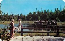 Manistique Michigan~Ferry? Raft? Kitch Iti Ki Pi Spring~1959 Postcard