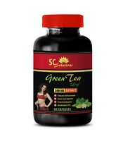 antioxidant green tea - GREEN TEA LEAF EXTRACT 300mg - boost metabolism 1B