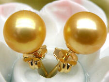golden yellow south sea pearl round 9mm earring stud 14k solid gold AAA+++
