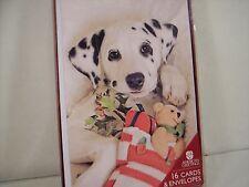 Dalmation Puppy Christmas Hanukkah Cards Plush Bear Box 16