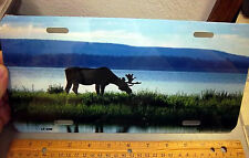 Bull Moose and beautiful Lake Novelty Metal License Plate, made in the USA