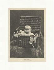 Toast New Year Luks Wicker Baby Infant Box Flowers Fur Wood Engraving E 12534
