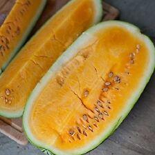 10 Orange-Fleshed Watermelon Seeds ORANGEGLO Heirloom Fruit Organic