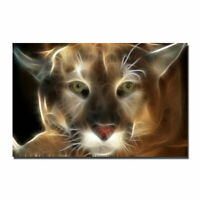 137773 Fire Puma Animal Decor Wall Print POSTER