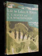 Collins New Naturalist 15; Life in Lakes & Rivers, 1951-1st - Macan/Worthington