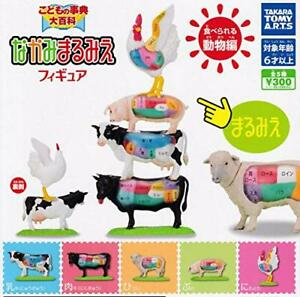 Skeleton Edible animal figure All 5 types Full Comp set From Japan Capsule toy