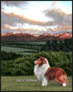 Shetland Sheepdog Sheltie Dog Scotland Limited Edition Art Print 8x10""