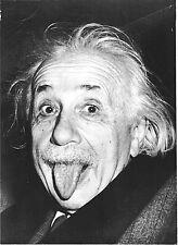"""2.5x3.5"""" ALBERT EINSTEIN FUNNY FACE Sticker / decal. Laptop computer genius math"""