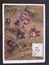 CSSR MK 1960 FLORA PLFANZEN RANUNCEL MAXIMUMKARTE CARTE MAXIMUM CARD MC CM c6535