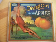 Vintage Diving Girl Brand California Apples Crate Label Watsonville Apple