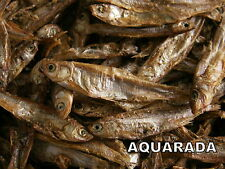 Stinte getrocknet 1000ml Trockenfische Schildkrötenfutter Reptilien Koifutter