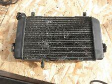 Radiator SV650S Suzuki SV650 00 01  99-02 #L2