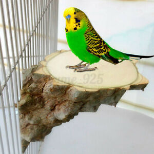 Wood Parrot Bird Cage Perches Platform Stand Rack Pet Budgie Hanging Chew To