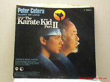 PETER CETERA-(45 W/ PIC. SLV.)- GLORY OF LOVE(THEME FROM THE KARATE KID II)-1986